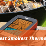 Best Smokers Thermometers