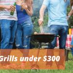 Best Grills Under $300